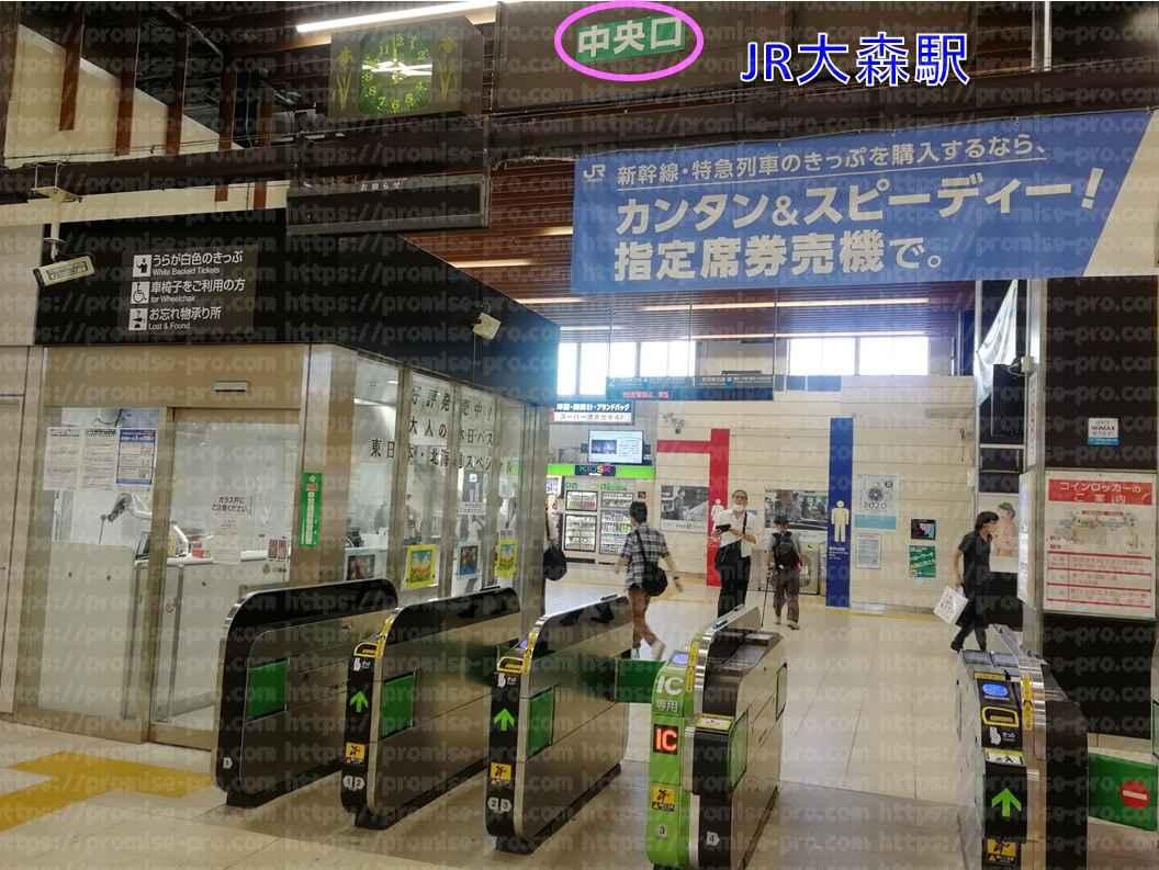 JR大森駅中央口改札画像
