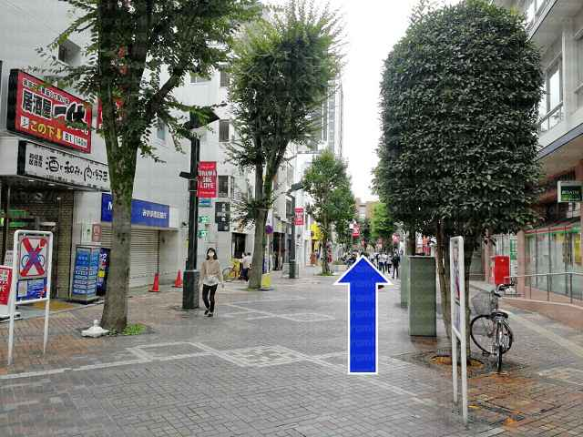 浦和さくら草通りの画像